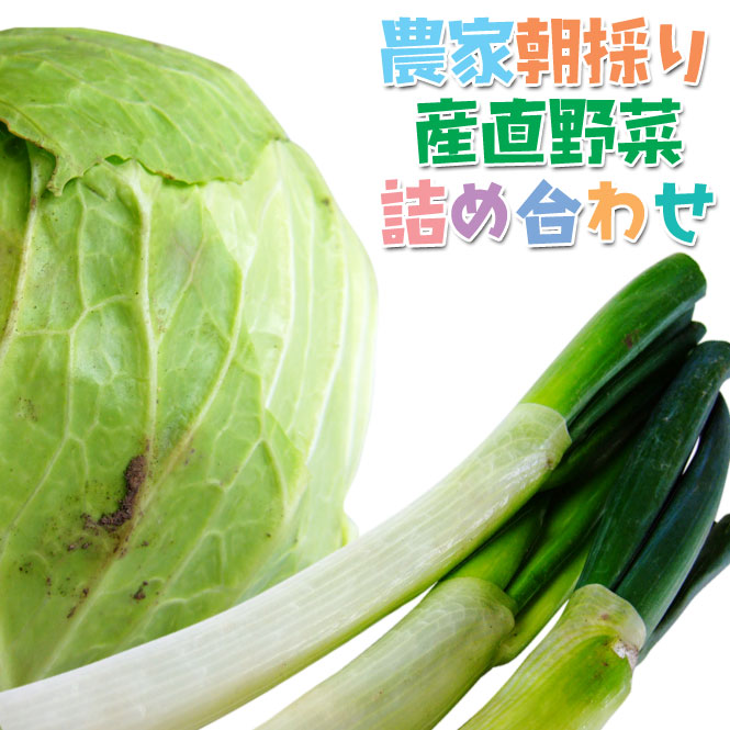 喜多方 農家朝採り 産直野菜詰め合わせ